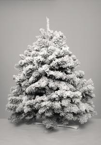 11-12-14_christmastree-013pro_2_copy
